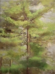 Pines, Spring, 2008, oil on linen, 12 x 9 in.