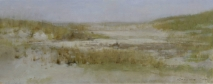 Christopher Gallego, Image Title: Beach Grasses #1